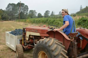 Farmer at Apple Hill Winery Smokey Ridge Ranch